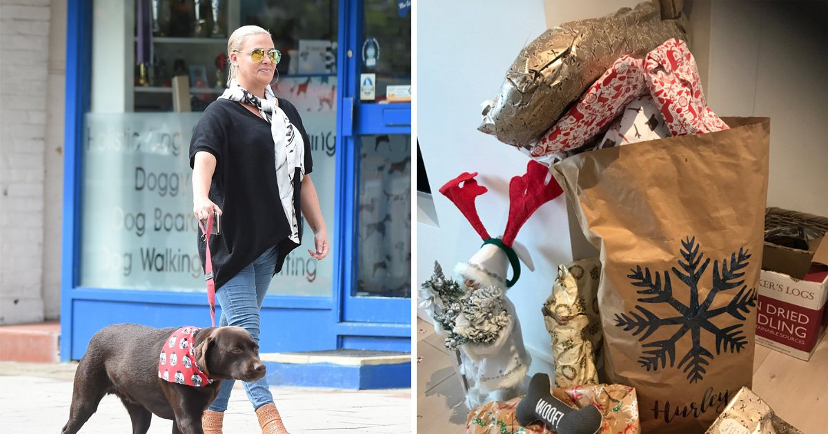 Ant McPartlin's ex-wife Lisa Armstrong showers pet dog with Christmas presents amid custody battle