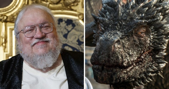 George RR Martin weighs in on the Daenerys dragon debate in Fire and Blood
