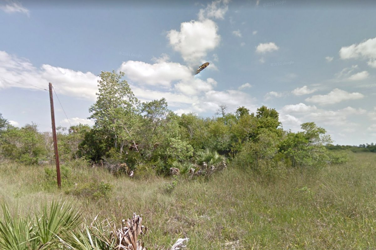 Weird UFO spotted hovering over swamp in Florida (Picture: Google)