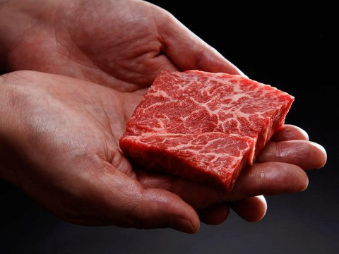 From cruelty-free Wagyu beef to Lewis Hamilton: A week in vegan news