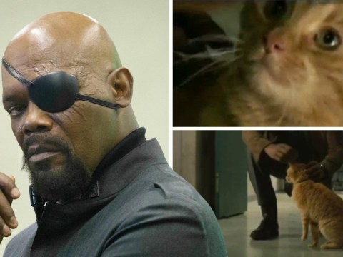 Captain Marvel fans cook up theory on how Nick Fury really lost his eye as trailer is released