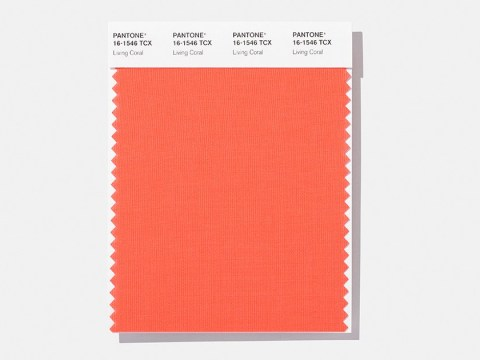 Pantone's colour of the year for 2019 is Living Coral
