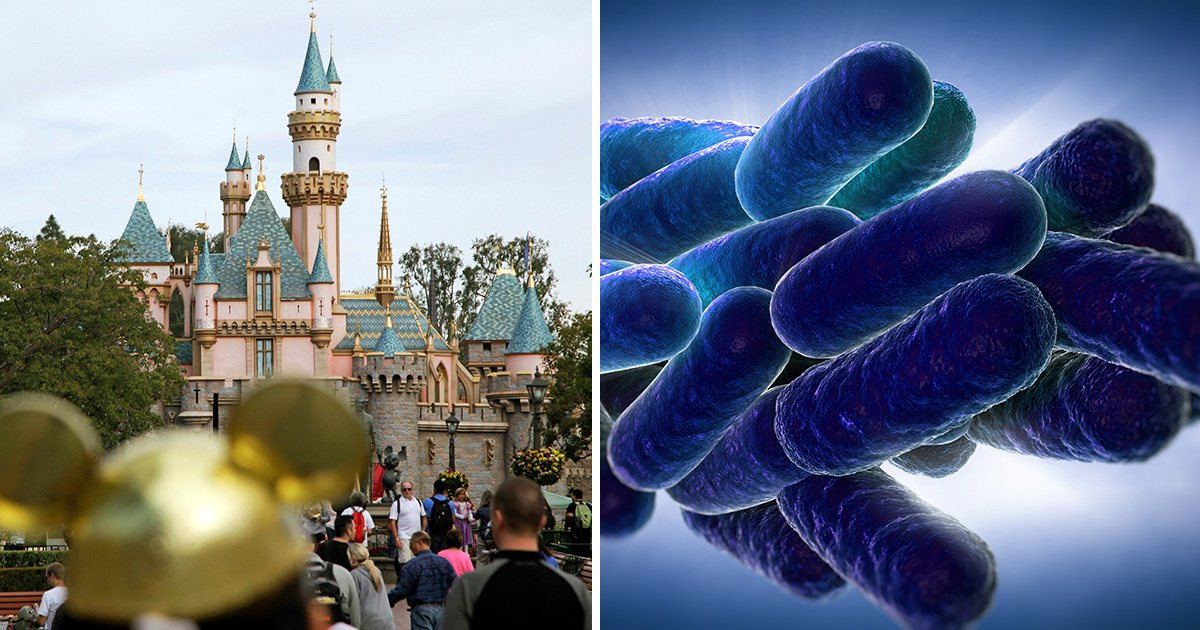 Disneyland cooling tower that sprays people with water 'caused disease outbreak'