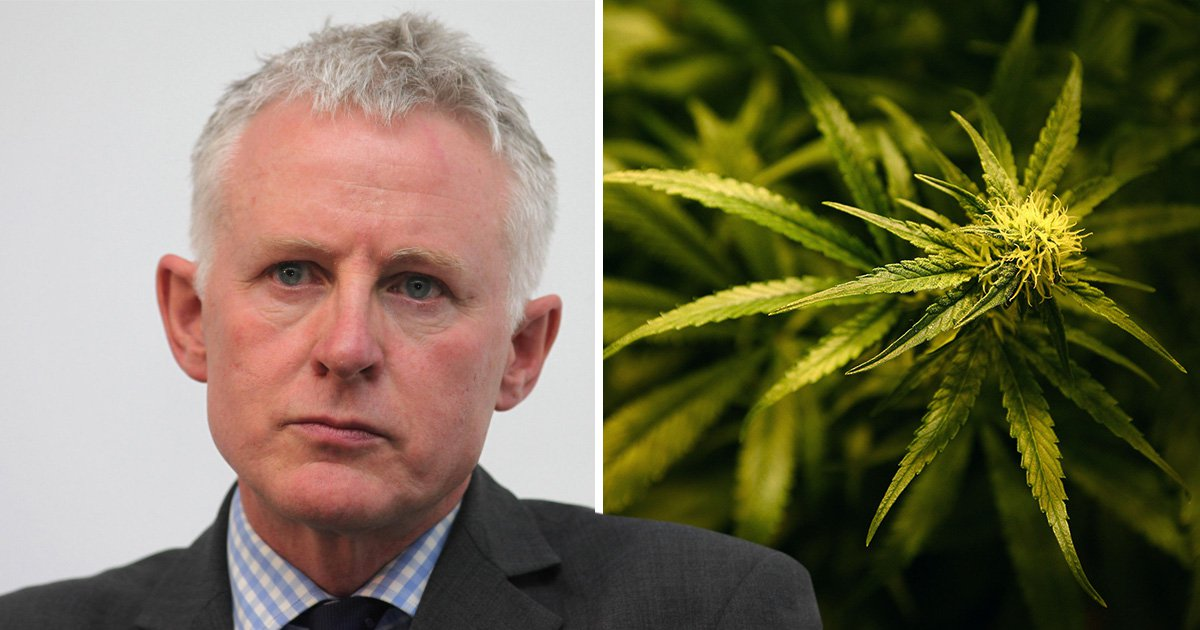 Bid to legalise cannabis in the UK blocked by MPs