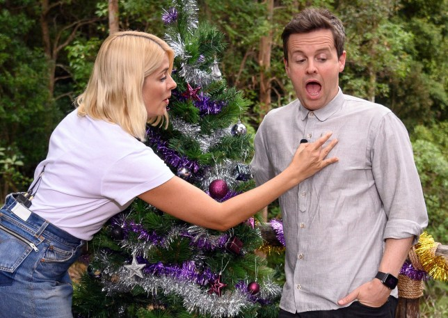 STRICT EMBARGO - NOT TO BE USED BEFORE 22:30 GMT, 06 DEC 2018 - EDITORIAL USE ONLY Mandatory Credit: Photo by James Gourley/ITV/REX (10015113a) Holly Willoughby brushes an ant off Declan Donnelly 'I'm a Celebrity... Get Me Out of Here!' TV Show, Series 18, Australia - 06 Dec 2018