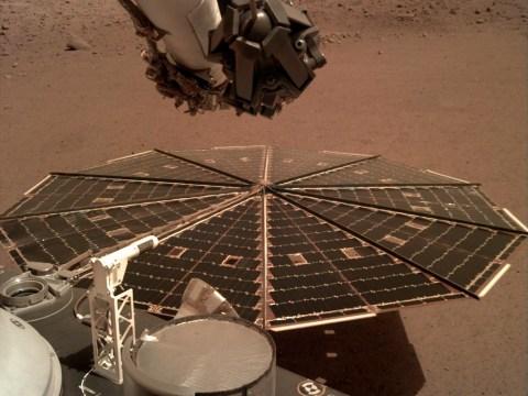 Tornado-like Martian dust storms have been battering Nasa's lander