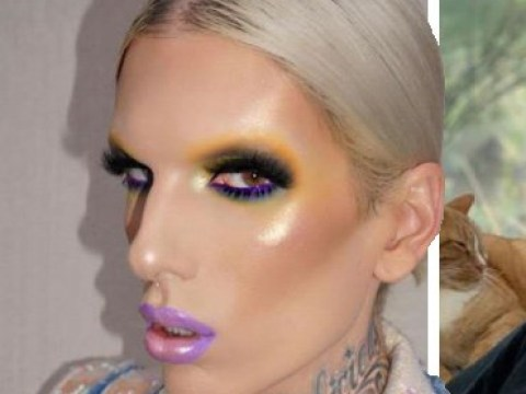 Shane Dawson and Jeffree Star are neighbours and people are so ready for the collabs