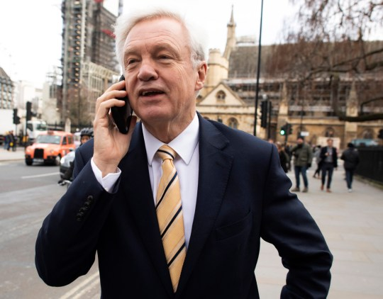 Former Brexit Secretary, David Davis speaks on a mobile telephone as he passes the British Houses of Parliament in central London, Britain, 12 December 2018.