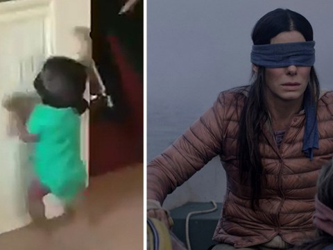 'Don't hurt yourselves': Netflix issue panicked warning against Bird Box challenge as baby smacks into wall