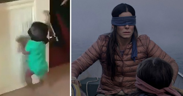 What is Bird Box Challenge? Netflix issue warning as baby