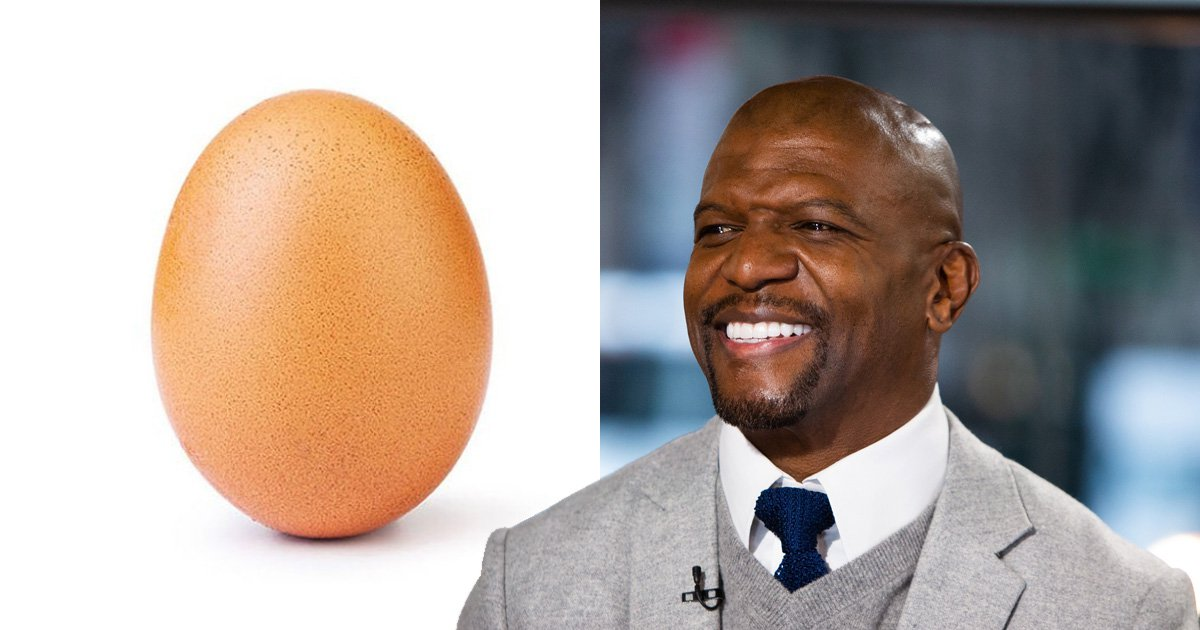 Terry Crews wants his bald head to beat the World Record Egg to most-liked Instagram pic