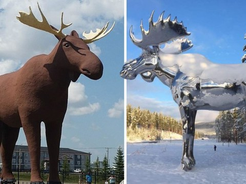 There's some major beef between Canada and Norway over their giant moose statues