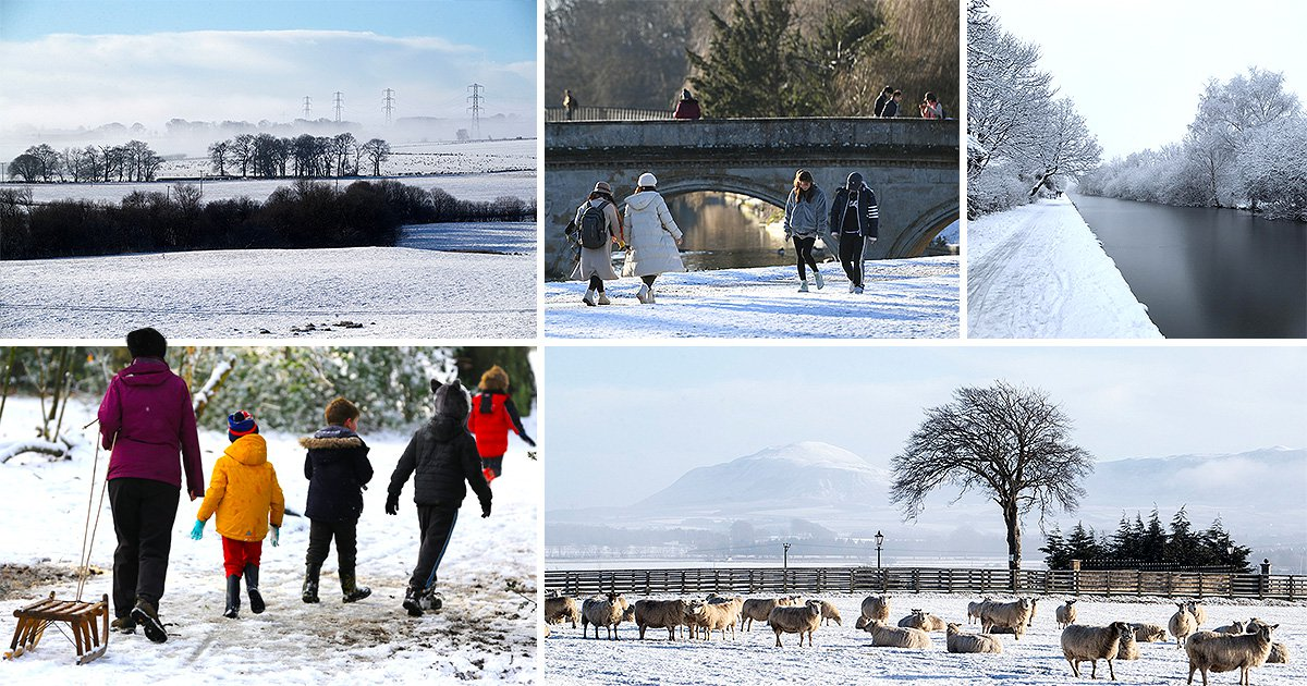 Beautiful snow pictures reveal Britain has turned into white wonderland