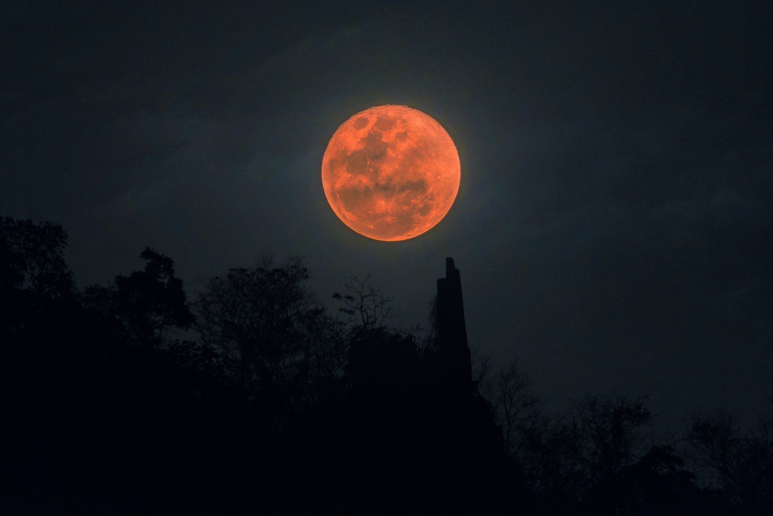 Why some people think January's Super Wolf Blood Moon means the world will end in 2019