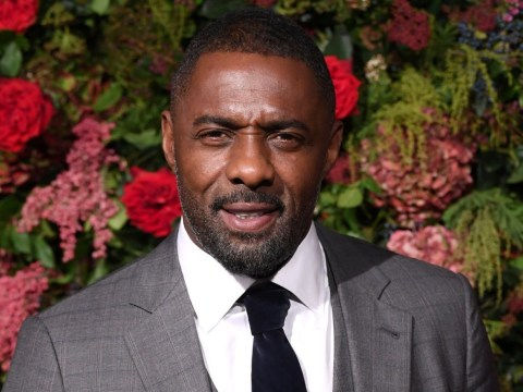 Idris Elba rushes from stage to help audience member who suffered seizure during show