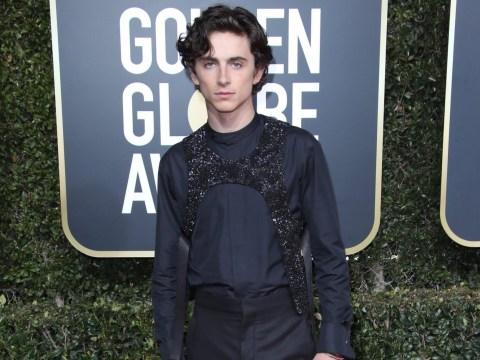Timothee Chalamet didn't wear a Louis Vuitton sex harness to the Golden Globes so we can all calm down
