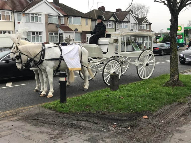 PIC FROM Kennedy News and Media (PICTURED: THE HORSE DRAWN CARRIAGE AT CAPTAIN'S FUNERAL) A dog owner was so devastated by the loss of her pet pooch that she splashed out ??4,000 on an incredibly lavish funeral - including a horse-drawn hearse, limousine and a dove release. Grieving Sasha Smajic didn???t eat for a week when 11-year-old Staffordshire Bull Terrier Captain passed away on Christmas Day after suffering a cardiac arrest on the operating table. Determined to give her rescue ???angel??? a proper send-off, Sasha arranged a white-themed celebration of his life with family-run HUMAN funeral directors - claiming he deserved the same respect as any deceased family member. SEE KENNEDY NEWS COPY - 0161 697 4266