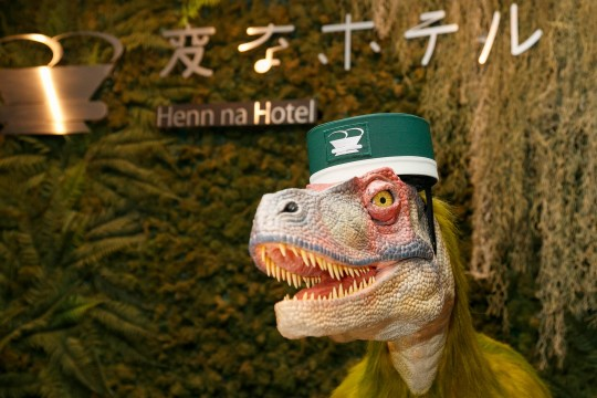 Mandatory Credit: Photo by Aflo/REX/Shutterstock (8520634f) A raptor robot debuts working at the front desk of Henn-na (Weird) Hotel, Chiba, Japan. The hotel is managed by robots who can attend guests in English, Chinese and Japanese language. Every room has a concierge robot ''Tapia'' set to talk or make a request from guests such as turn on or off TV or provides weather forecast and news. Henn-na robot Hotel, Chiba, Japan - 15 Mar 2017 Henn-na hotel opens its second branch in Chiba Prefecture, near to Tokyo Disney from March 15, which rooms cost start from 17,000 JPN per night. The first robot hotel opened in 2015 in Nagasaki.