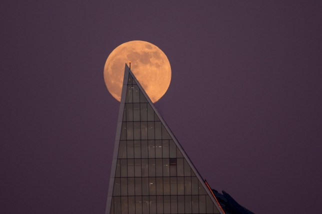 Alamy Live News. RE6RAT London, UK. 20 January 2019. A supermoon rises over the City of London. Known as a supermoon due to its increased brightness and size, the supermoon will transition to a super wolf blood moon later in the night when the earth causes a lunar eclipse and the moon turns a reddish colour. Credit: Stephen Chung / Alamy Live News This is an Alamy Live News image and may not be part of your current Alamy deal . If you are unsure, please contact our sales team to check.