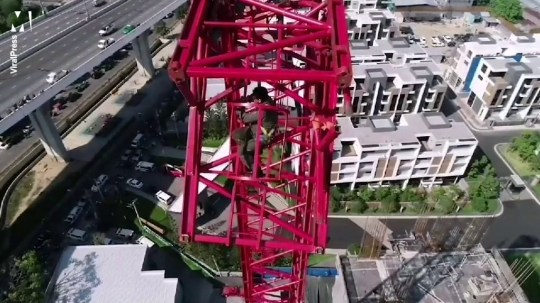 Builder hangs on for life after crane collapses killing four Credit: Viral Press