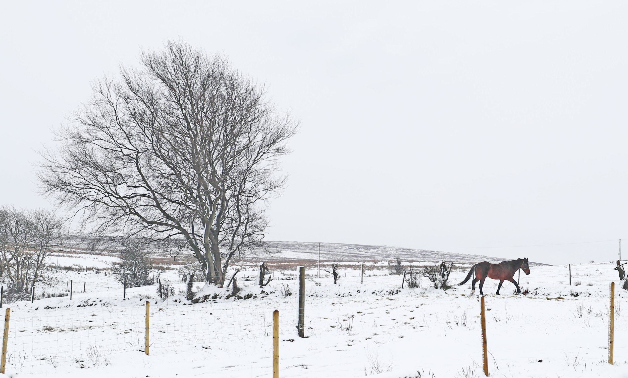 Temperatures to hit as low as -7C as UK struggles to get above freezing