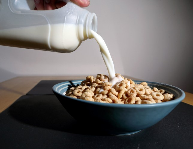 Embargoed to 2330 Wednesday January 30 File photo dated 19/02/18 of breakfast cereal. The theory that breakfast is the most important meal of the day - including for dieters - may not be true, research suggests. PRESS ASSOCIATION Photo. Issue date: Wednesday January 30, 2019. A review of studies found that eating breakfast does not appear to help people lose weight and should not necessarily be recommended as a weight-loss strategy. See PA story HEALTH Breakfast. Photo credit should read: Steve Parsons/PA Wire