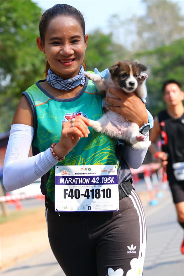 Woman finishes marathon holding puppy she rescued along the way