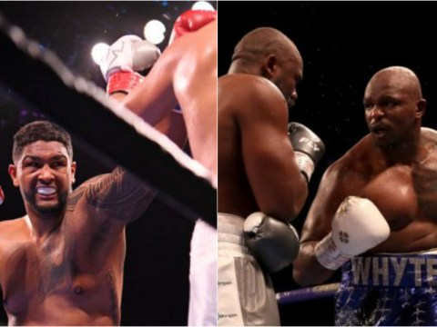 Dominic Breazeale and Dillian Whyte ordered to fight for shot at WBC title