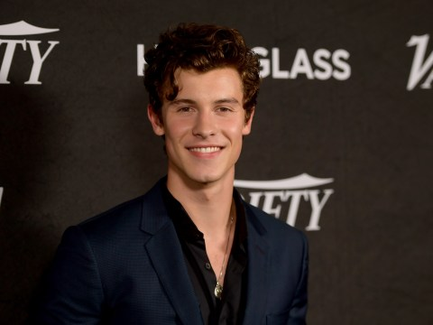 Shawn Mendes fans aren't impressed with his apology for past racially insensitive tweets