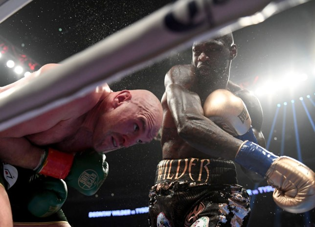 Deontay Wilder and Tyson Fury are set to fight again next year