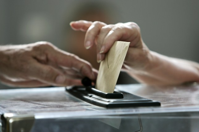 Voting in a by-election