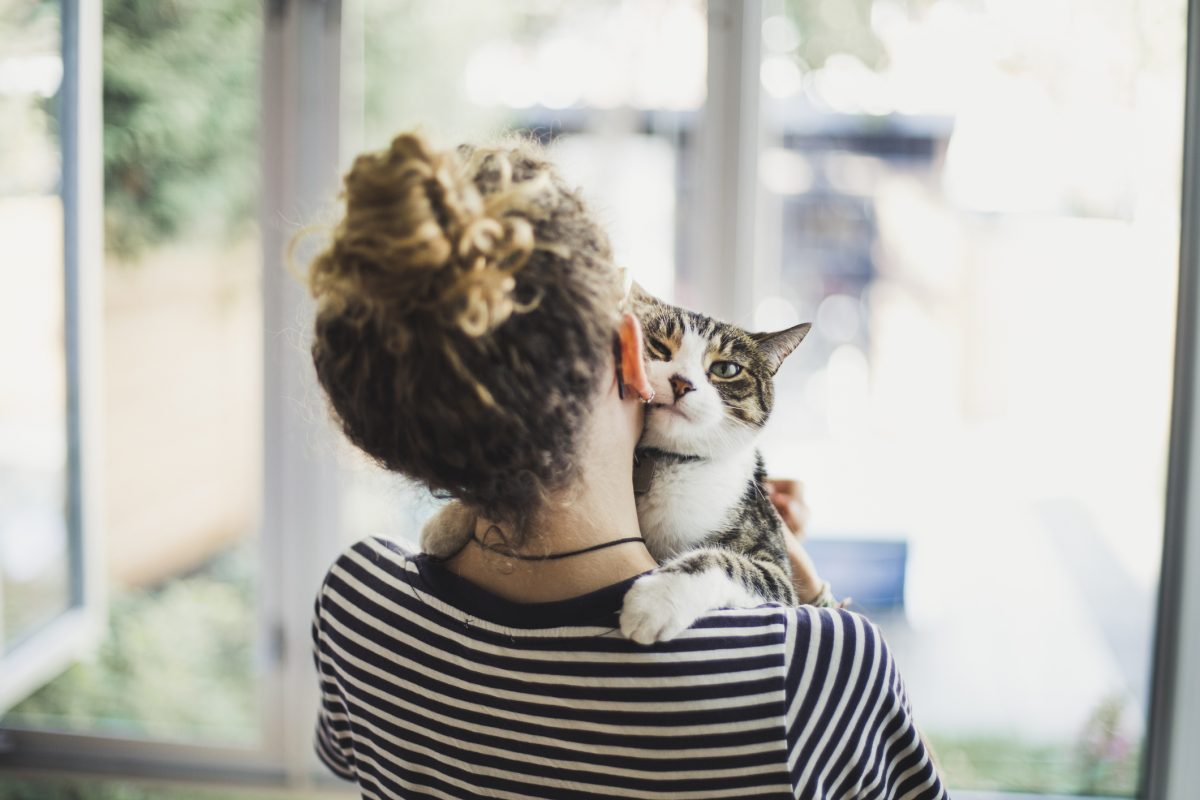 Your anxiety levels could be stressing out your cat