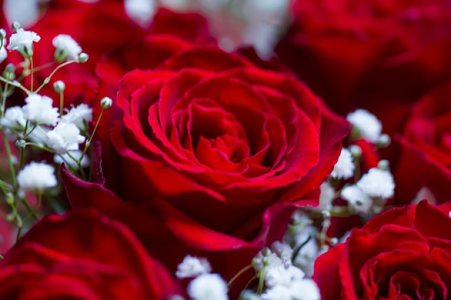 How To Get Valentine S Day Flowers Delivered On Thursday In