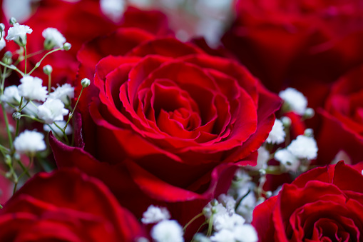How to get Valentine's Day flowers delivered on Thursday in the UK