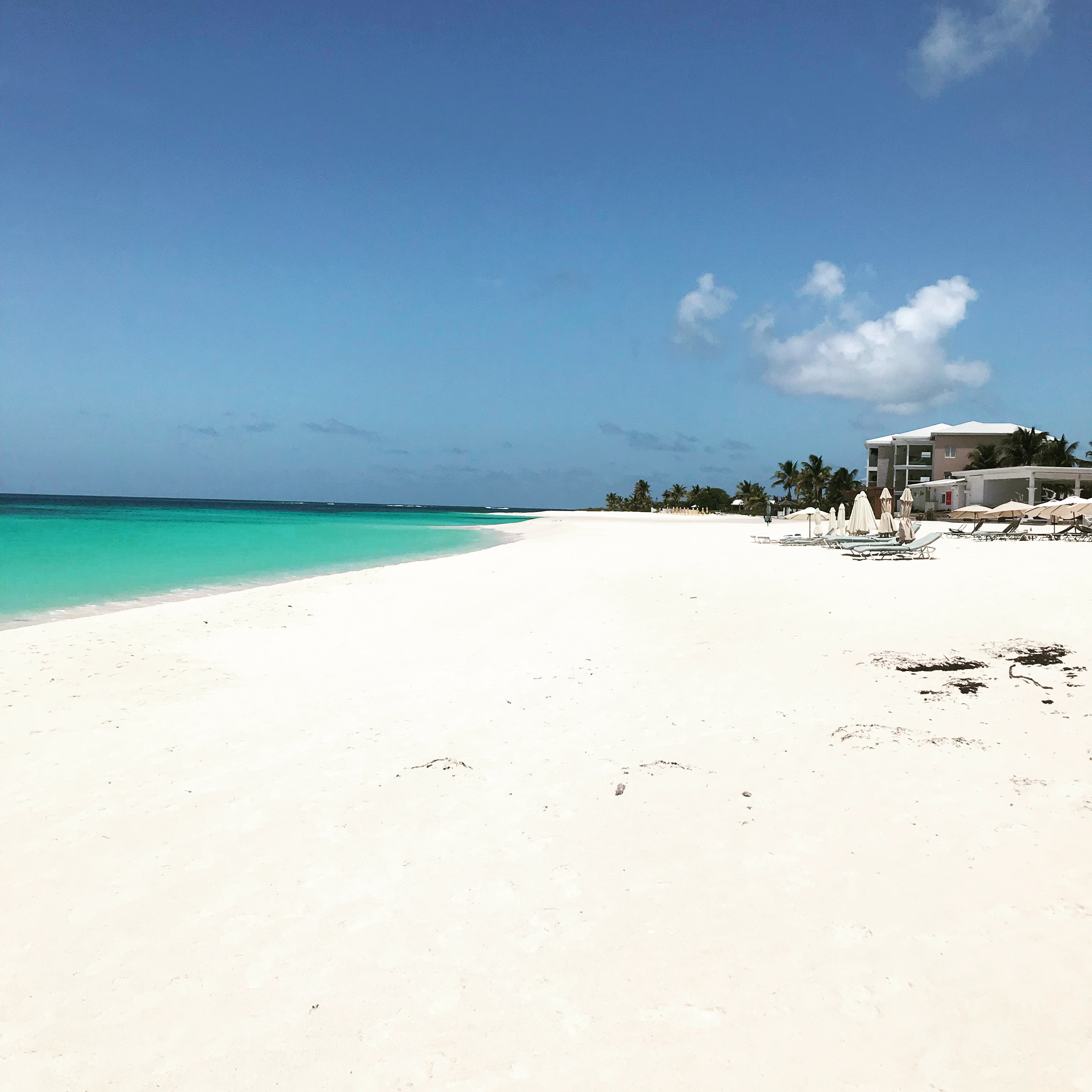 anguilla everything you need
