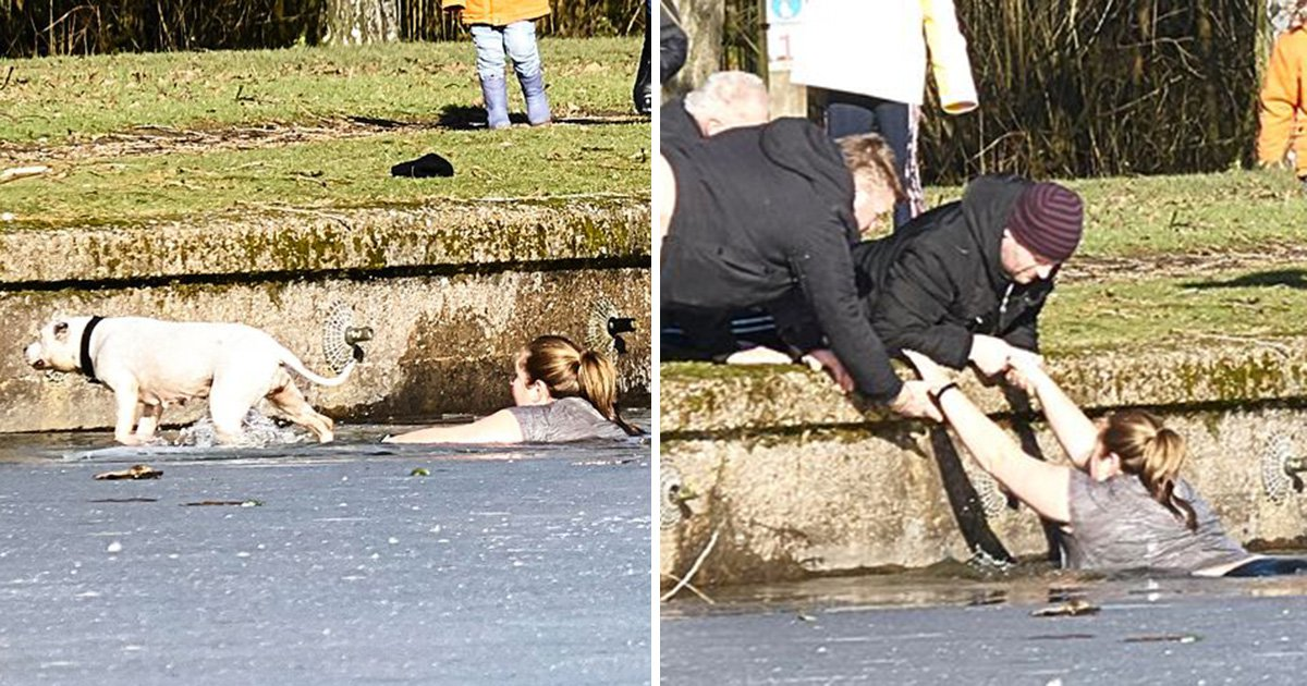 Heroic woman jumps in frozen lake to save drowning dog