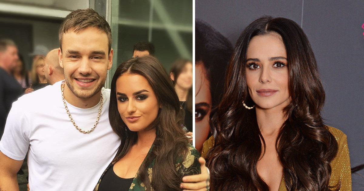Did Liam Payne date Love Island star Amber Davies after Cheryl split?