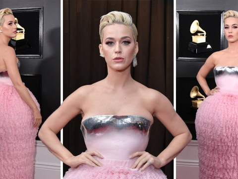 Katy Perry swears she's wearing Balmain but others want to put her on top of the toilet rolls