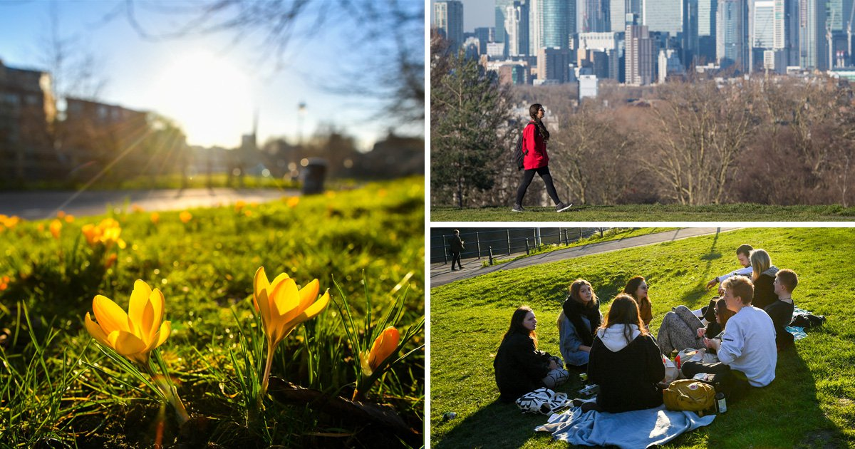 Record breaking days ahead with 19°C sunshine