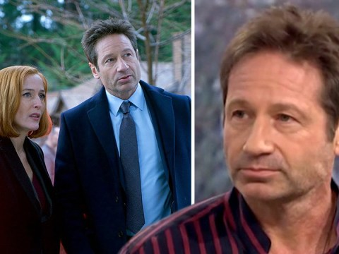 David Duchovny is in the dark about The X-Files future after Gillian Anderson reunion