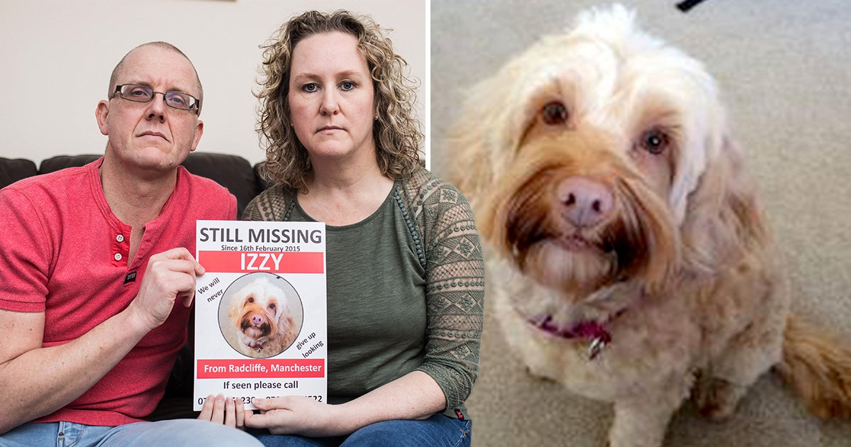 Couple spend £10,000 on hunt for dog who went missing four years ago