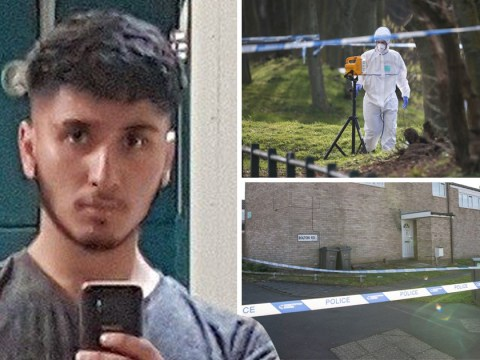 Teen, 16, stabbed to death in park is named and pictured