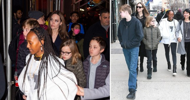 Angelina Jolie treats kids to Hamilton theatre date after