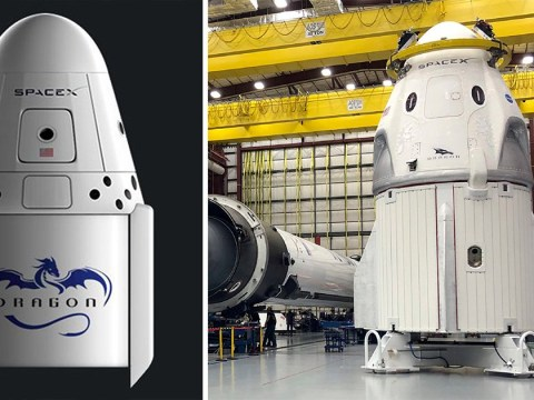 Nasa gives SpaceX the thumbs up to fly its Dragon capsule on March 2