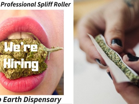 You can get paid £10 an hour to roll spliffs at UK's first cannabis café