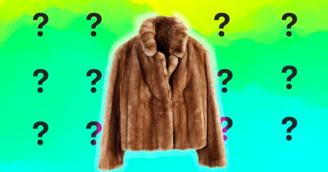 Fur coat on hanger isolated on plain background