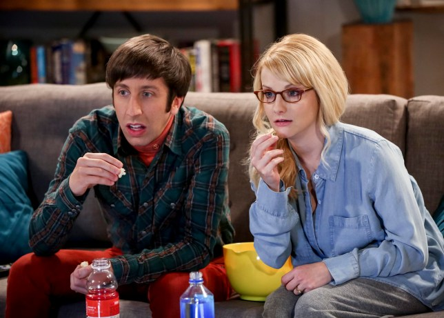 The Big Bang Theory - Howard Wolowitz (Simon Helberg) and Bernadette (Melissa Rauch).