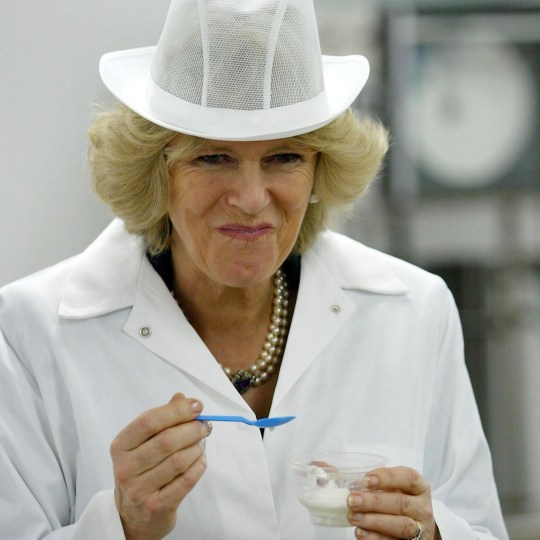 Camilla, Duchess of Cornwall tastes some ice cream during her visit to the Lowna Dairy in Raywell, East Yorkshire on February 7, 2006. (Photo by Anwar Hussein Collection/ROTA/WireImage)