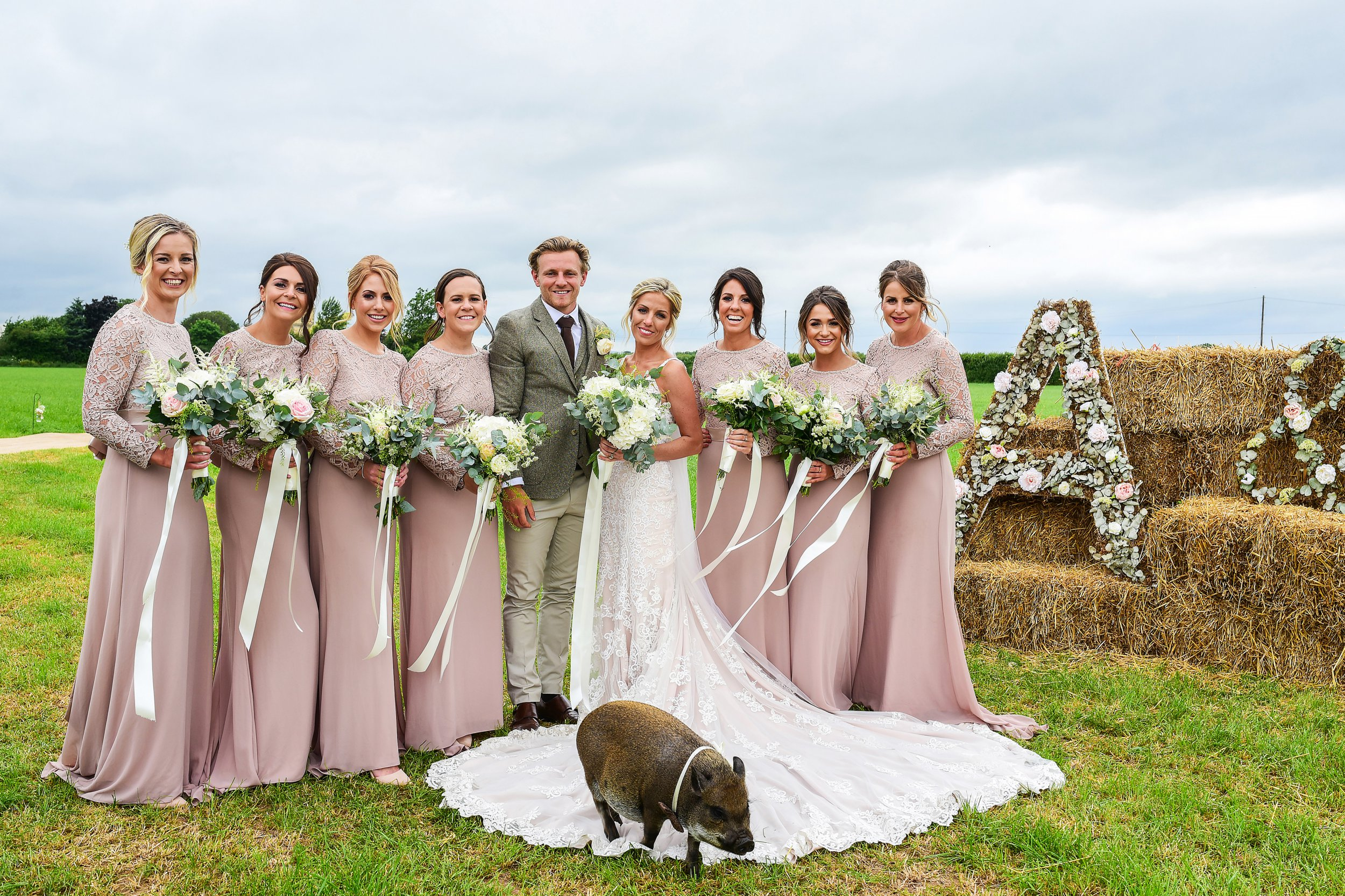 Micro pig photobombs couple on their wedding day