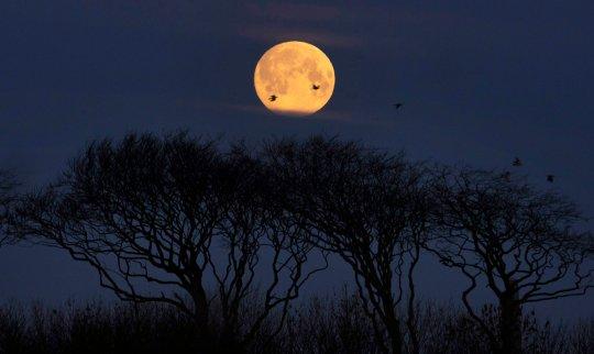 A full moon sets near Whitley Bay, North Tyneside (Credits: PA)